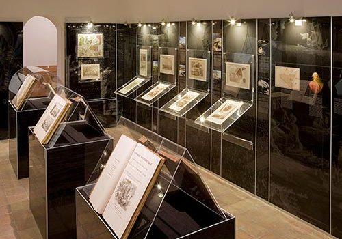 Museo-Viaggiatori-palazzolo-a